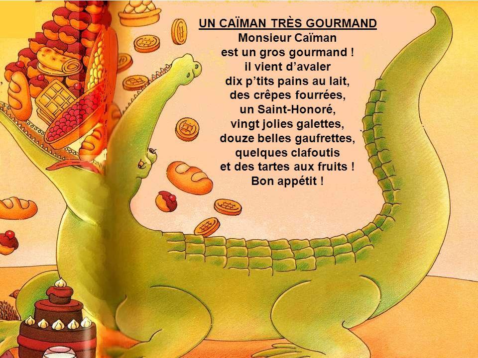 UN CAÏMAN TRÈS GOURMAND Monsieur Caïman est un gros gourmand !