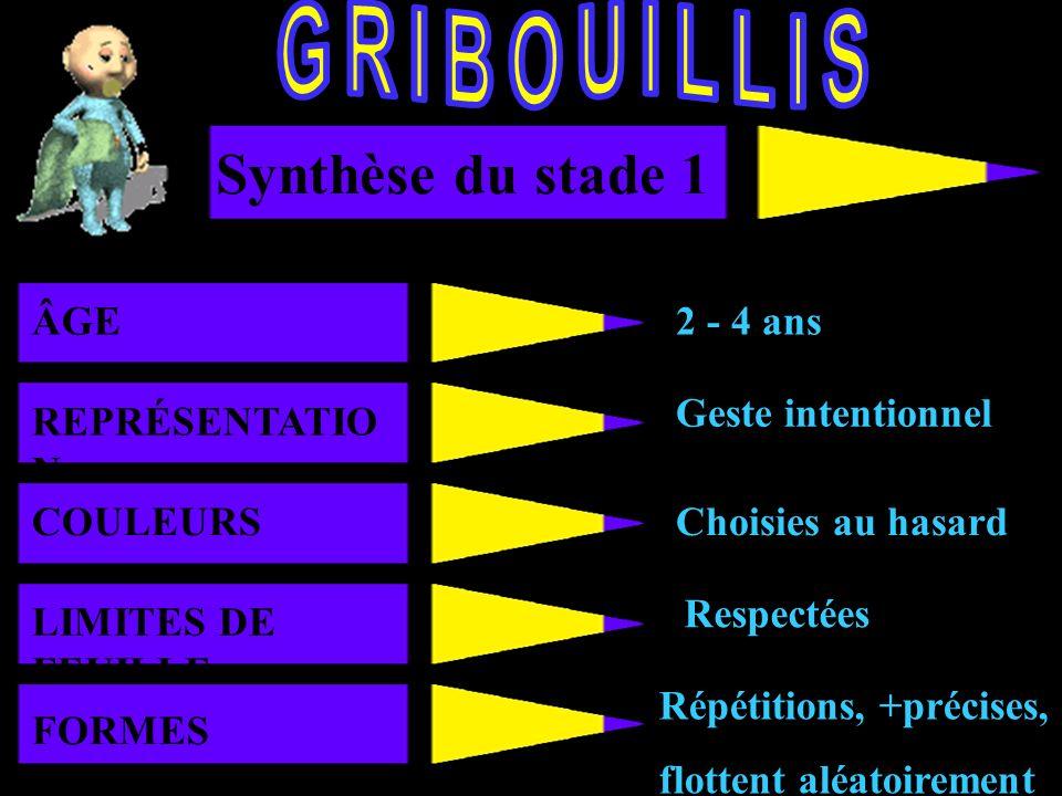 GRIBOUILLIS Synthèse du stade 1 AGE ÂGE 2 - 4 ans REPRÉSENTATION
