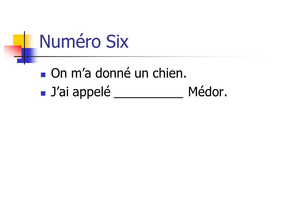 Numéro Six On m'a donné un chien. J'ai appelé __________ Médor.