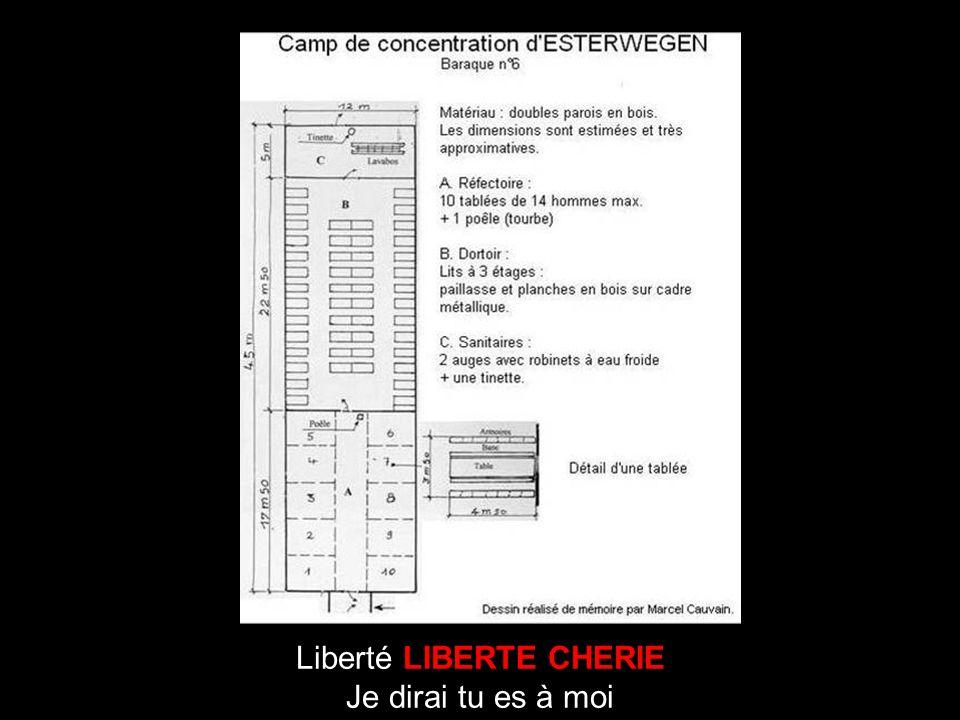 Liberté LIBERTE CHERIE