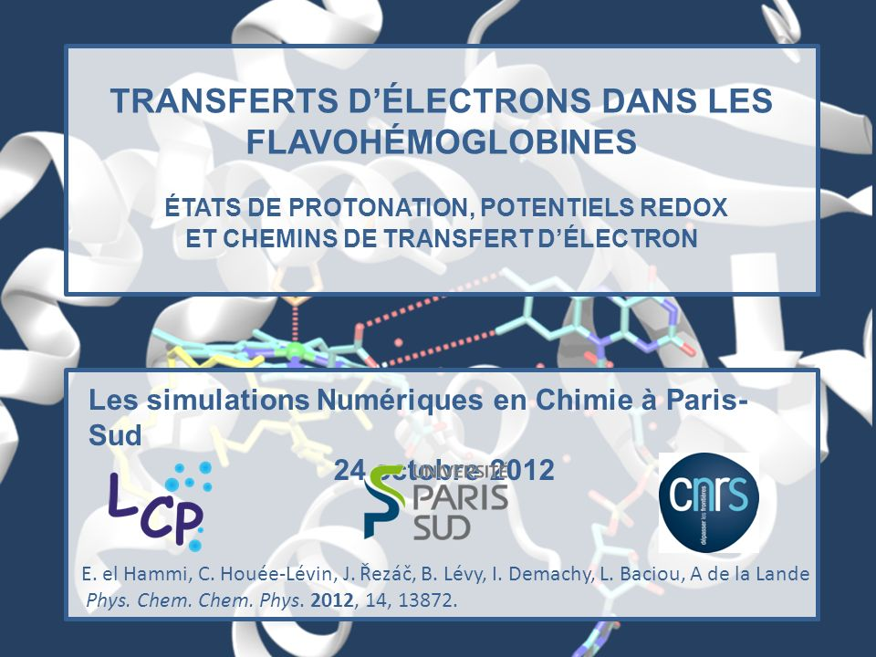 TRANSFERTS D'ÉLECTRONS DANS LES FLAVOHÉMOGLOBINES