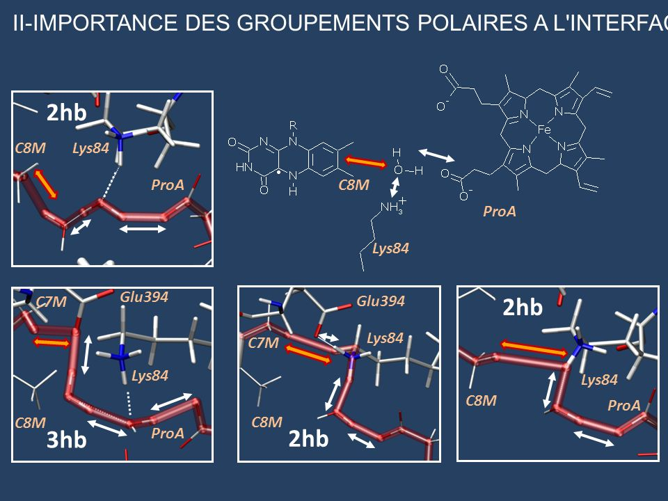 2hb 2hb 3hb 2hb II-IMPORTANCE DES GROUPEMENTS POLAIRES A L INTERFACE