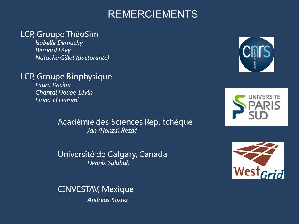 REMERCIEMENTS LCP, Groupe ThéoSim LCP, Groupe Biophysique