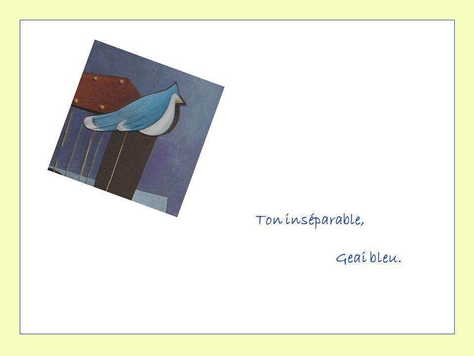 Ton inséparable, Geai bleu.
