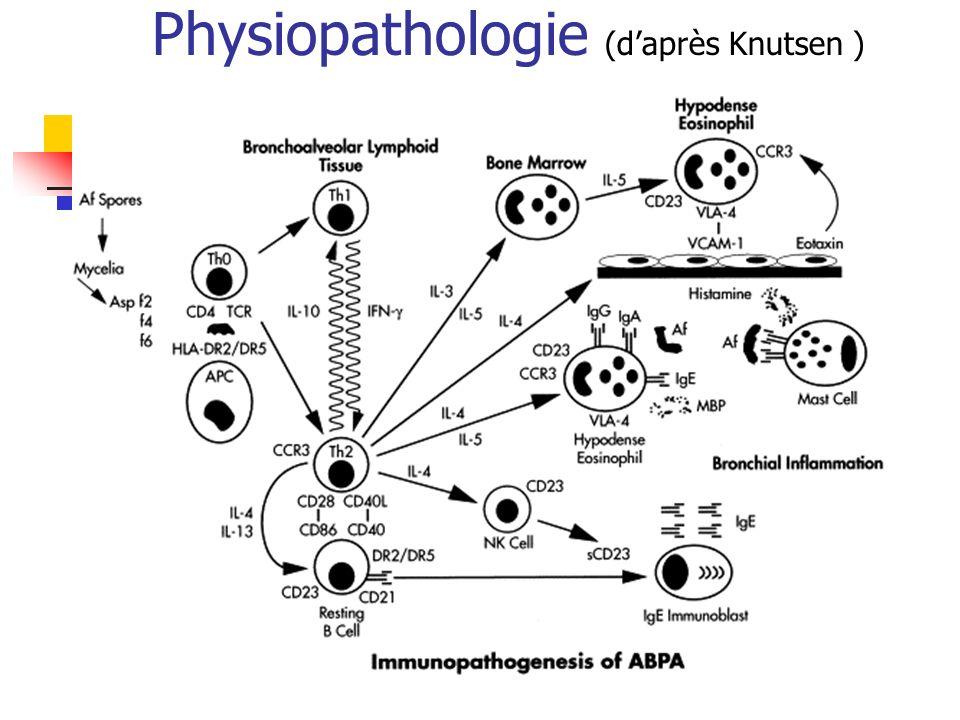 Physiopathologie (d'après Knutsen )