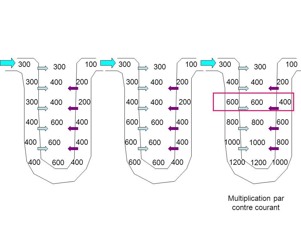 Multiplication par contre courant