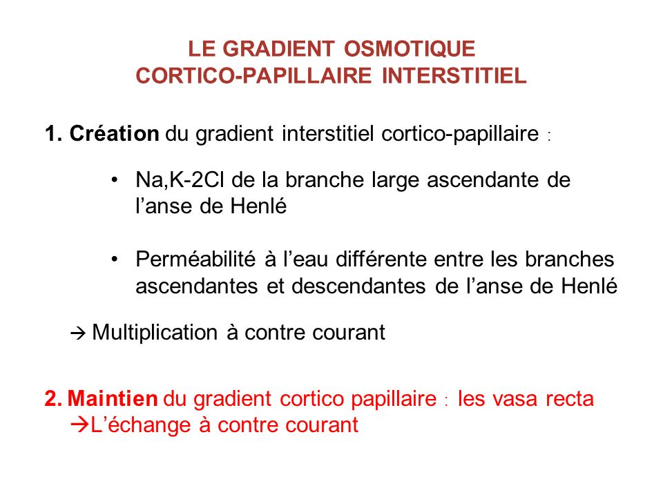 LE GRADIENT OSMOTIQUE CORTICO-PAPILLAIRE INTERSTITIEL