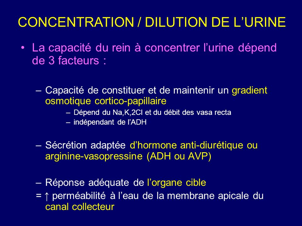 CONCENTRATION / DILUTION DE L'URINE