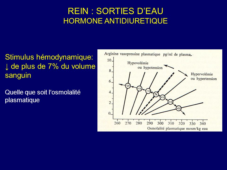 REIN : SORTIES D'EAU HORMONE ANTIDIURETIQUE