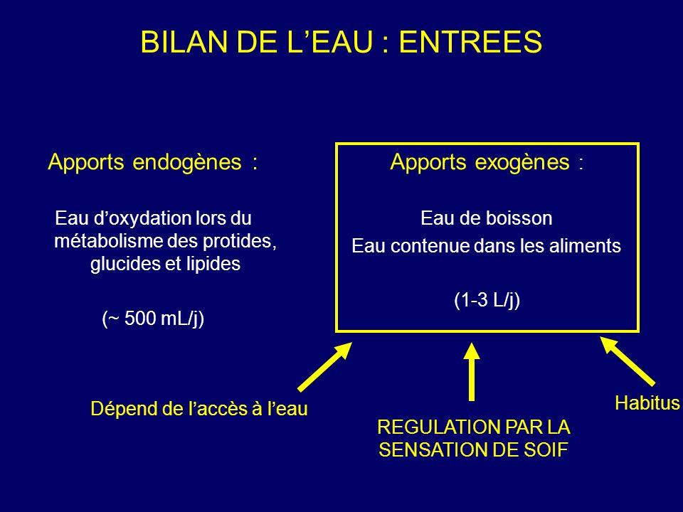 BILAN DE L'EAU : ENTREES