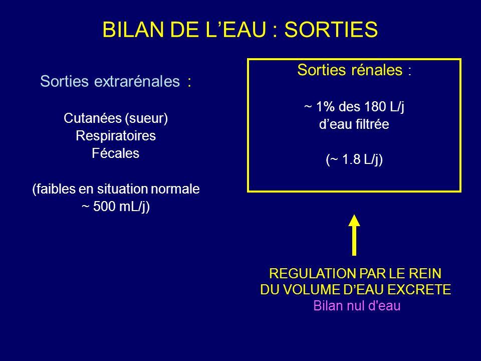 BILAN DE L'EAU : SORTIES