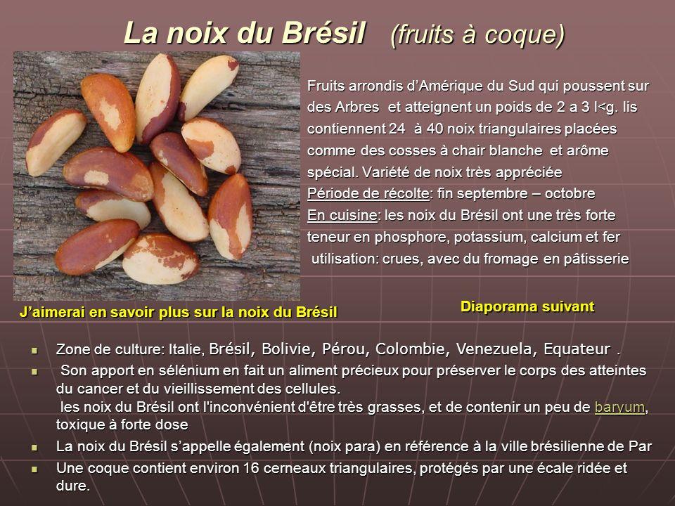 La noix du Brésil (fruits à coque)