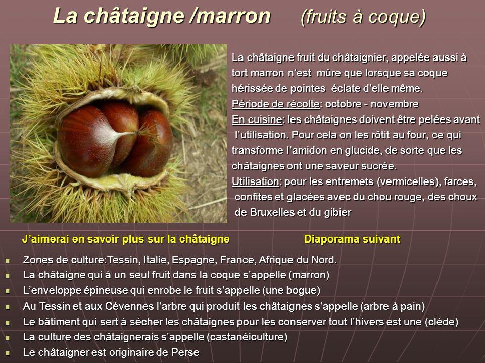 La châtaigne /marron (fruits à coque)