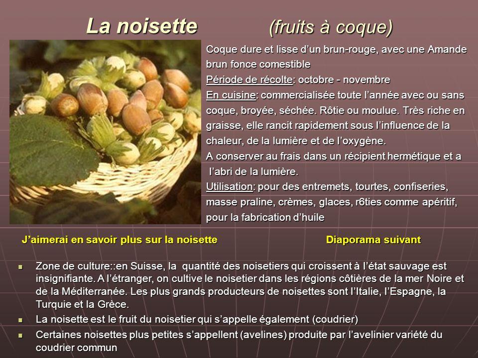 La noisette (fruits à coque)