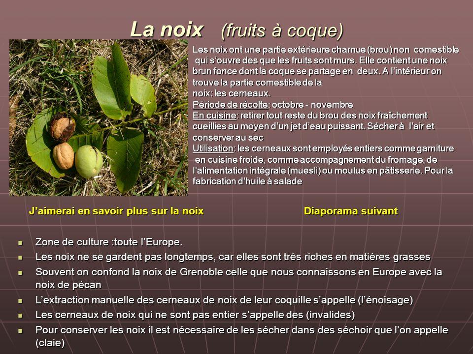 La noix (fruits à coque)