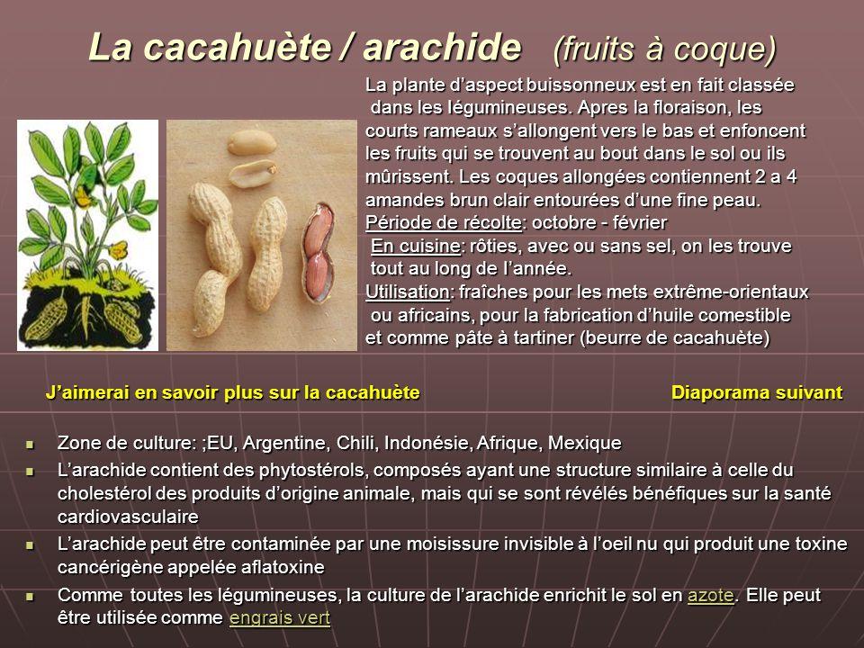 La cacahuète / arachide (fruits à coque)