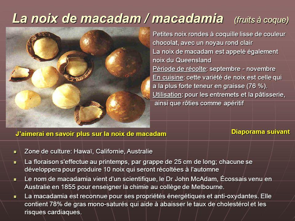 La noix de macadam / macadamia (fruits à coque)