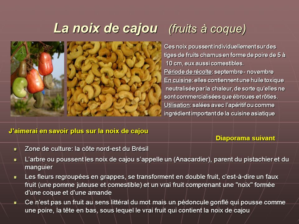 La noix de cajou (fruits à coque)