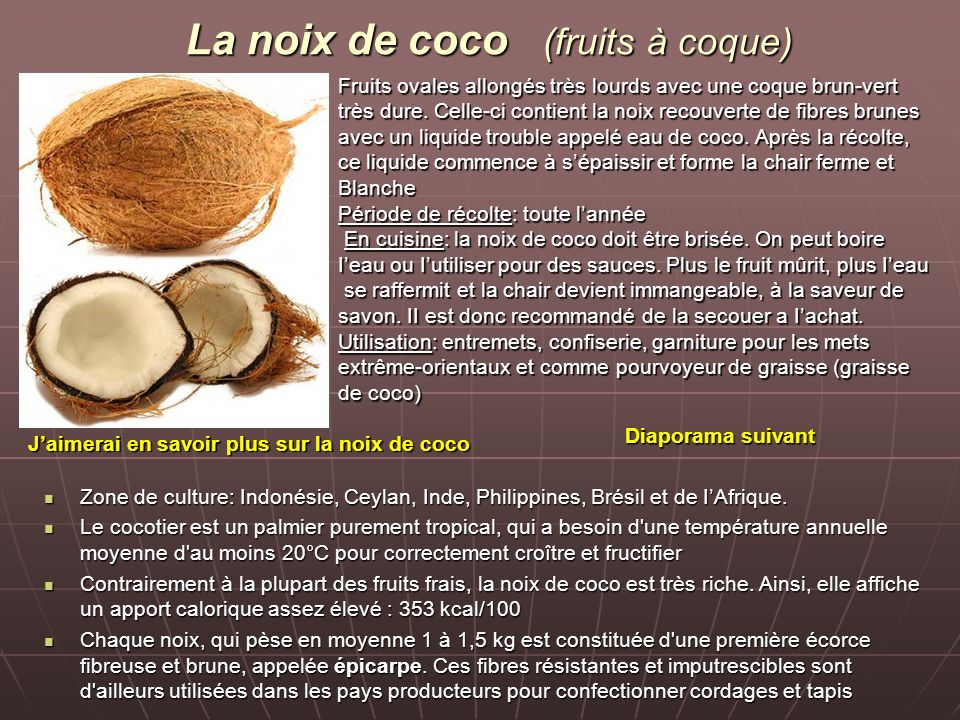 La noix de coco (fruits à coque)
