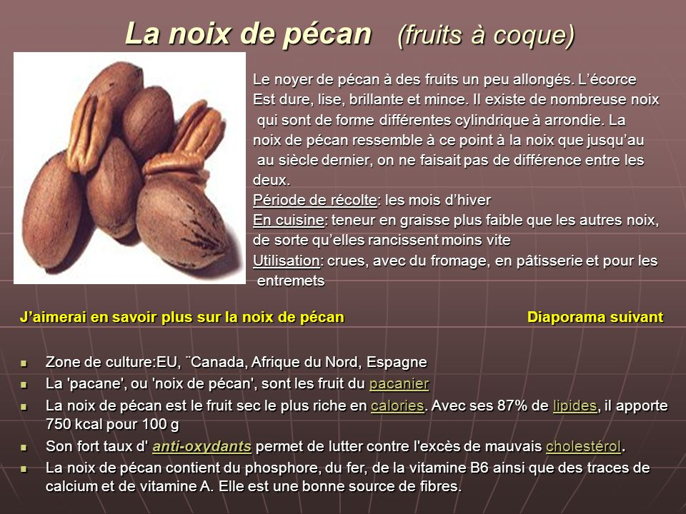 La noix de pécan (fruits à coque)