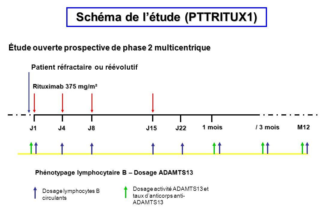 Schéma de l'étude (PTTRITUX1)