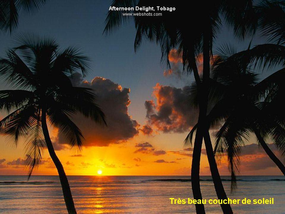 Très beau coucher de soleil