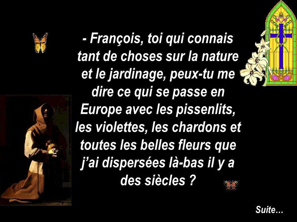 - François, toi qui connais tant de choses sur la nature et le jardinage, peux-tu me dire ce qui se passe en Europe avec les pissenlits, les violettes, les chardons et toutes les belles fleurs que j'ai dispersées là-bas il y a des siècles
