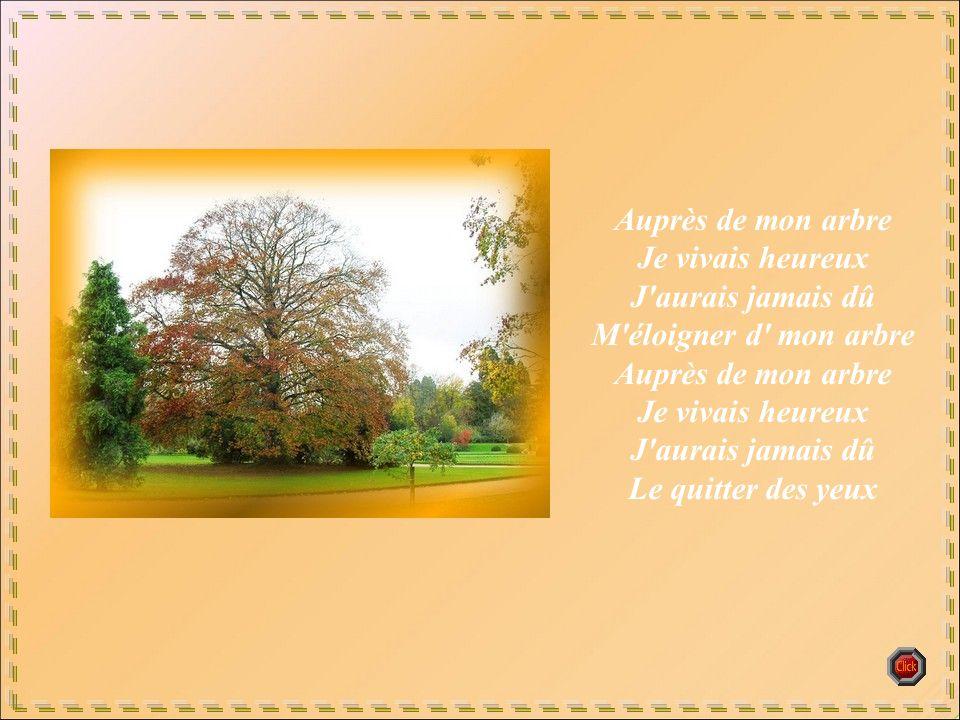 Auprès de mon arbre Je vivais heureux J aurais jamais dû M éloigner d mon arbre Auprès de mon arbre Je vivais heureux J aurais jamais dû Le quitter des yeux