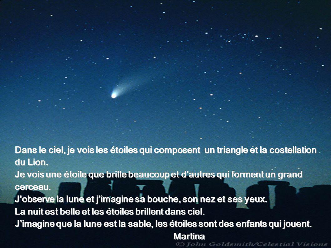 Dans le ciel, je vois les étoiles qui composent un triangle et la costellation du Lion.