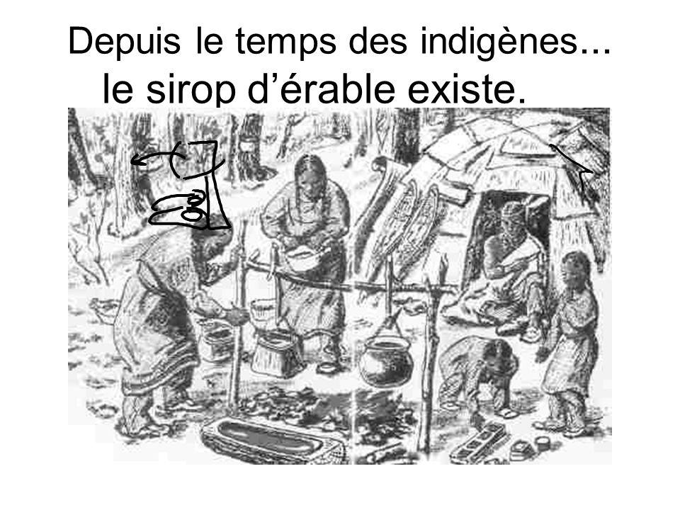 Depuis le temps des indigènes... le sirop d'érable existe.