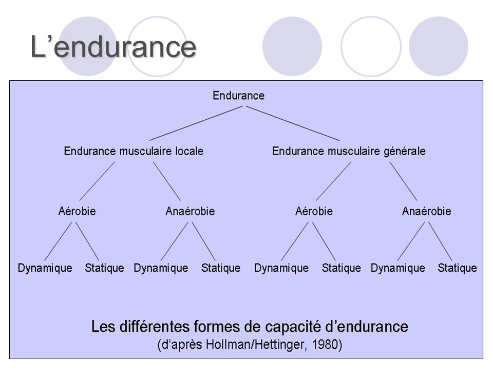 L'endurance Il est possible de distinguer :