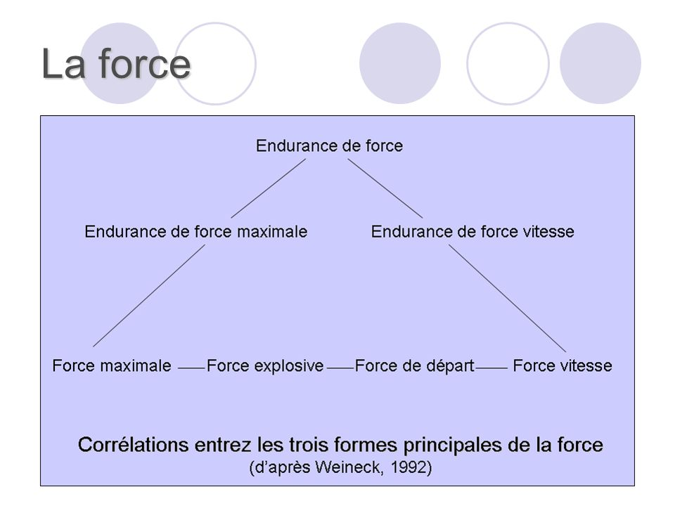 La force Il est possible de distinguer :