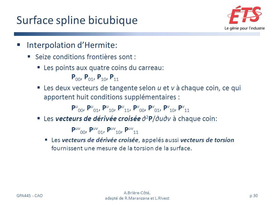 Surface spline bicubique