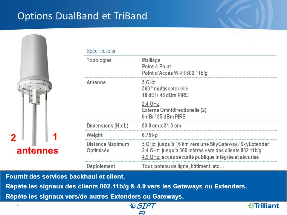 Options DualBand et TriBand