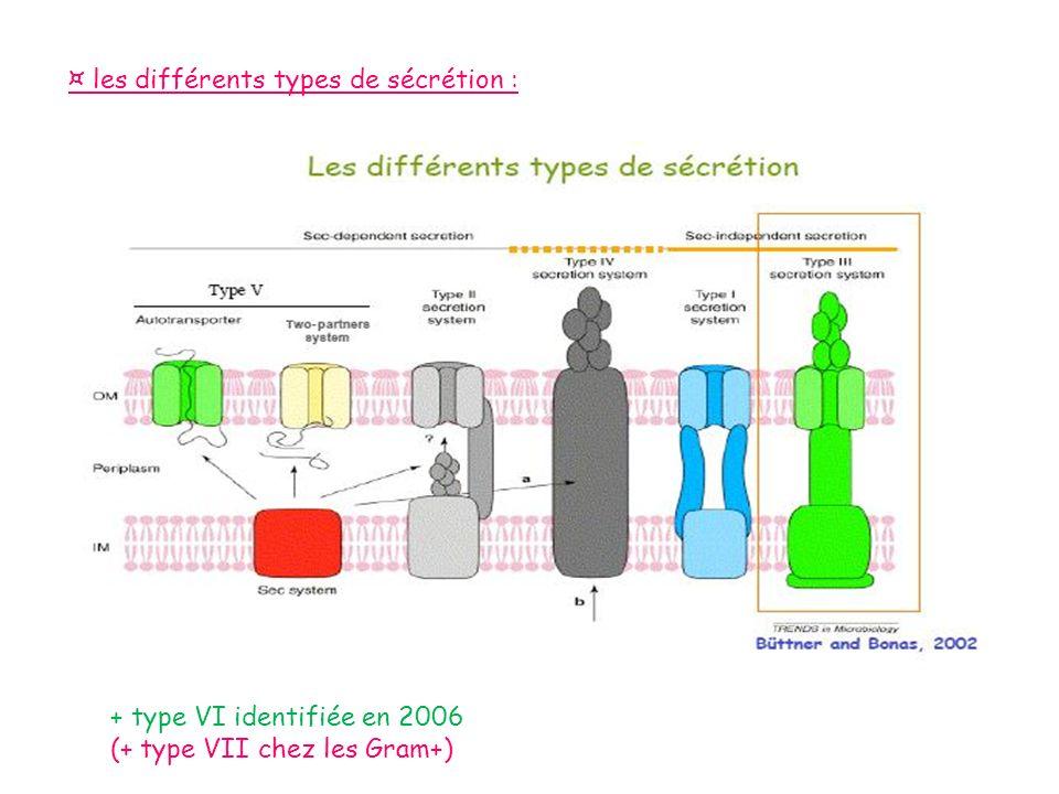 ¤ les différents types de sécrétion :