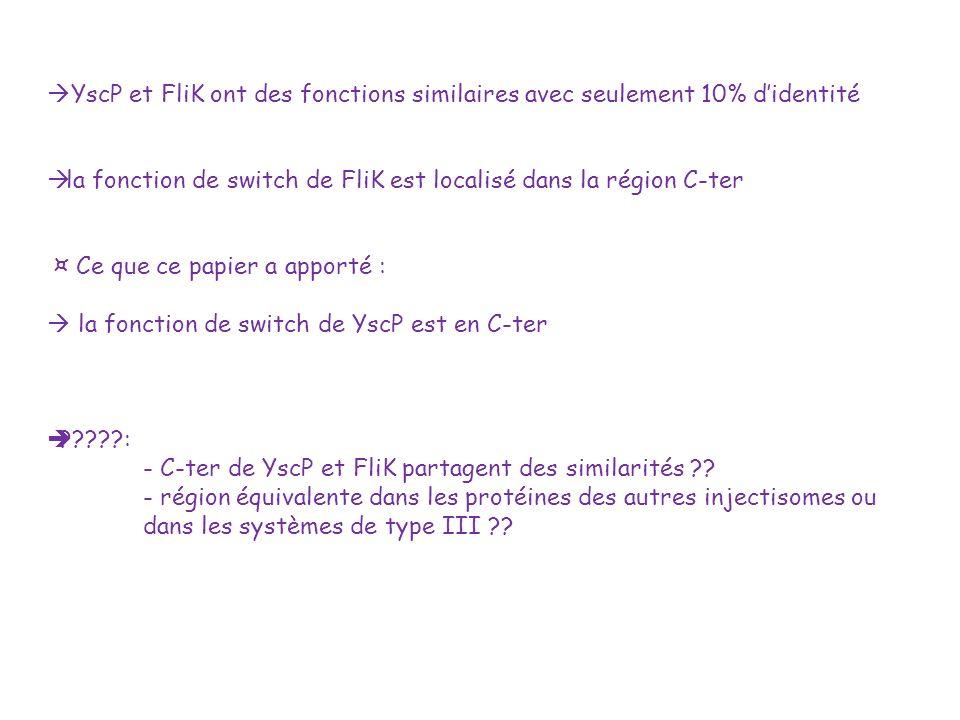 YscP et FliK ont des fonctions similaires avec seulement 10% d'identité