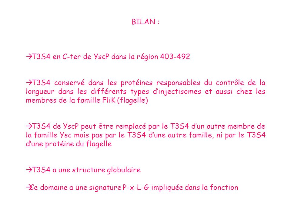 BILAN : T3S4 en C-ter de YscP dans la région 403-492.