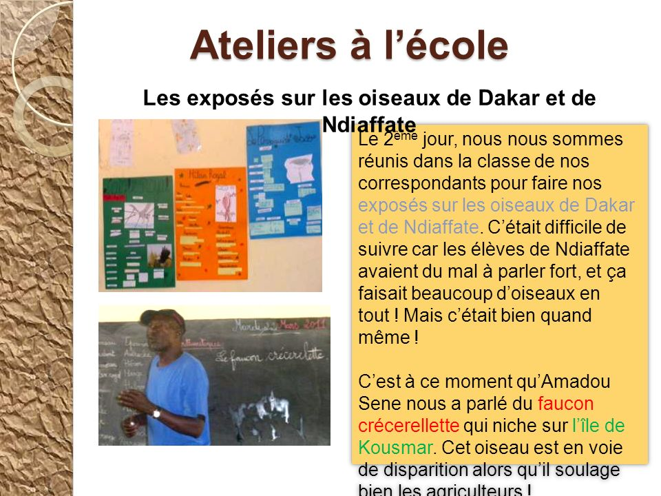Les exposés sur les oiseaux de Dakar et de Ndiaffate
