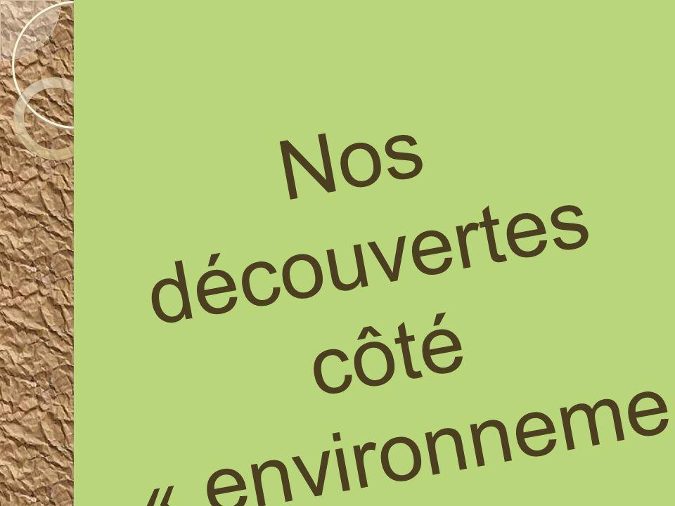Nos découvertes côté « environnement »