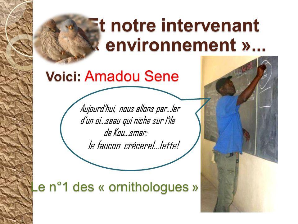 Voici: Amadou Sene Le n°1 des « ornithologues »