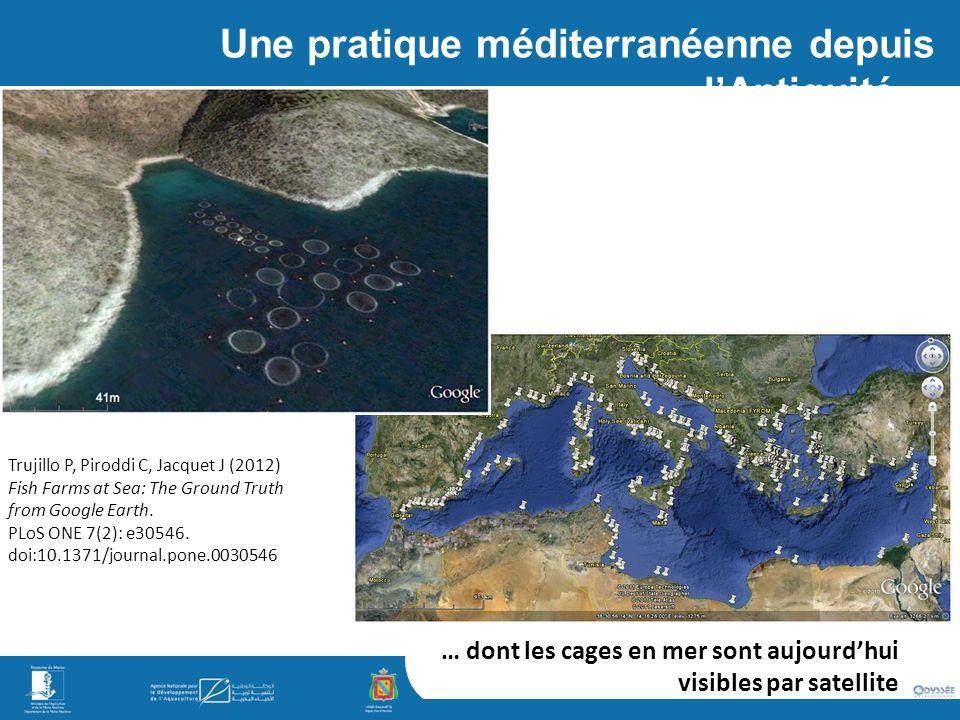 Une pratique méditerranéenne depuis l'Antiquité…