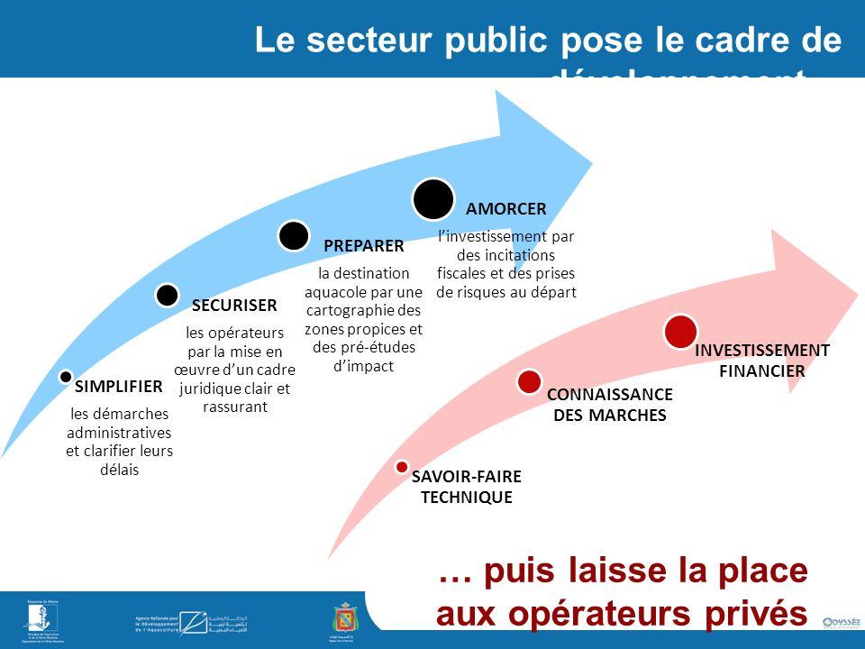 Le secteur public pose le cadre de développement…