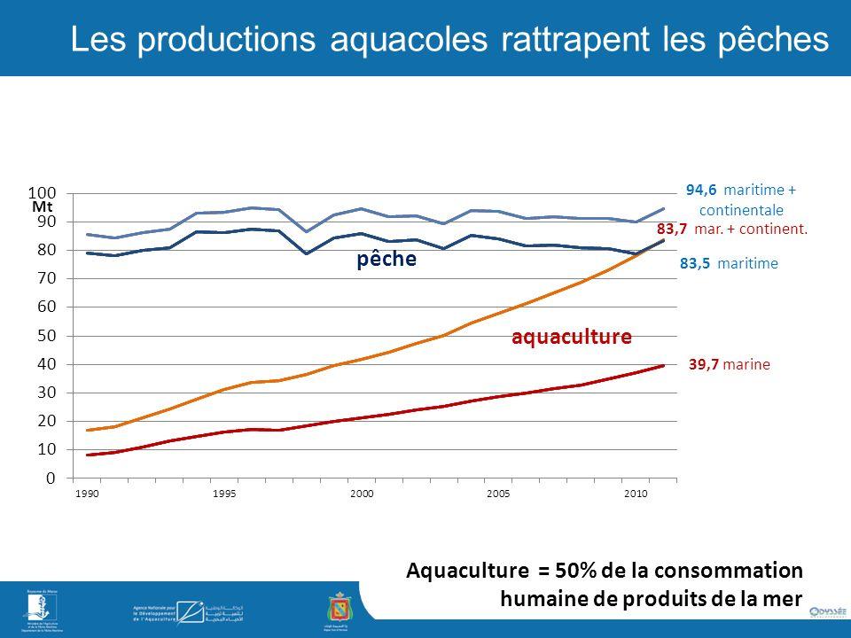 Les productions aquacoles rattrapent les pêches