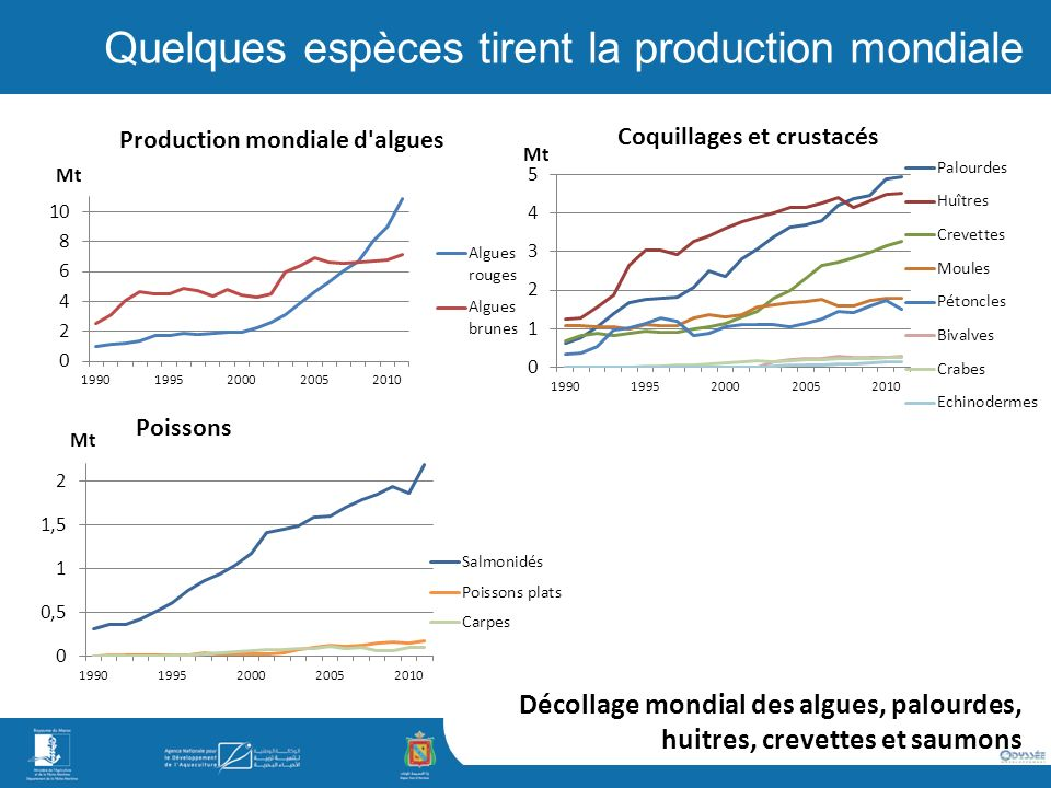 Quelques espèces tirent la production mondiale
