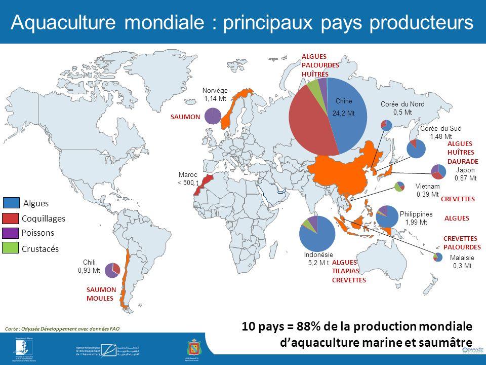 Aquaculture mondiale : principaux pays producteurs