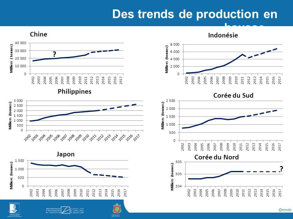 Des trends de production en hausse…