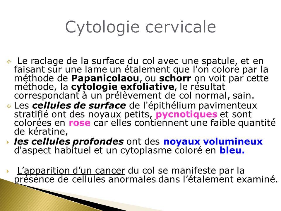 Cytologie cervicale