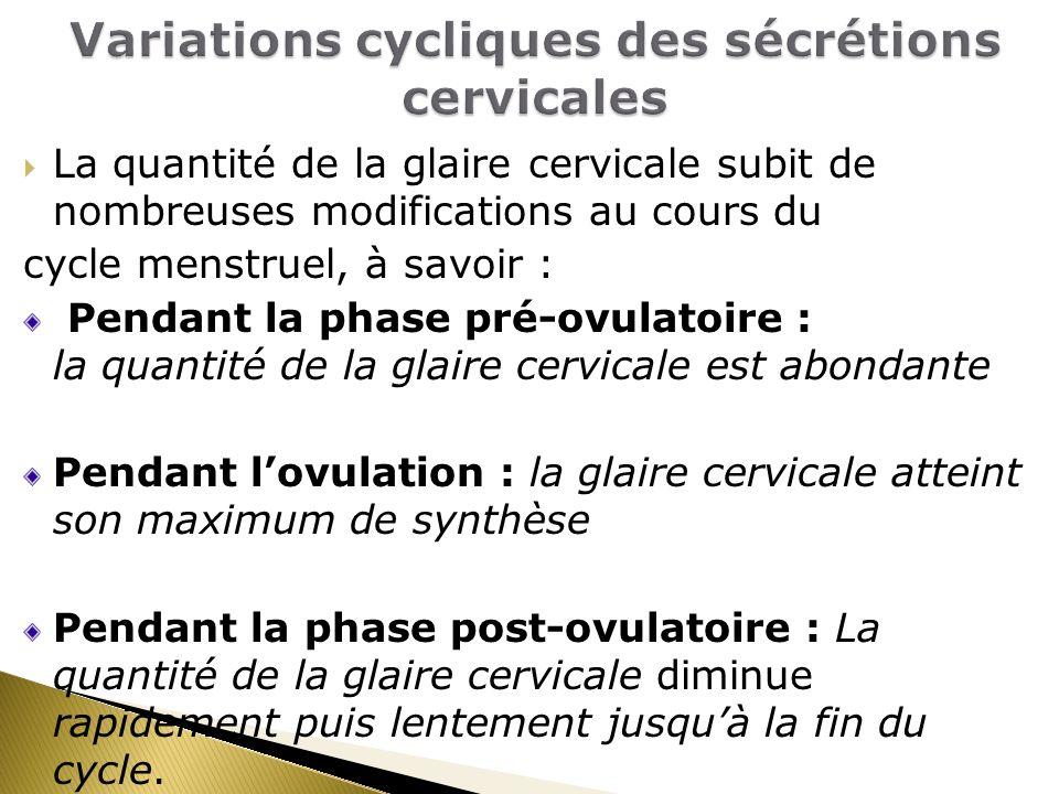 Variations cycliques des sécrétions cervicales