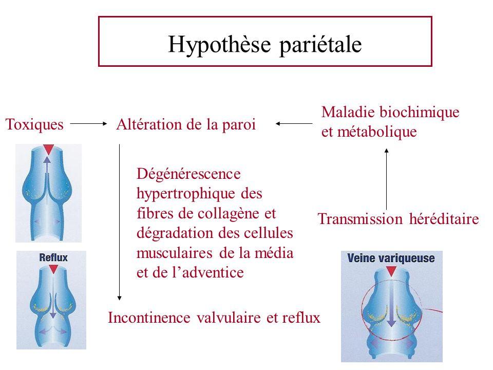 Hypothèse pariétale Maladie biochimique et métabolique Toxiques