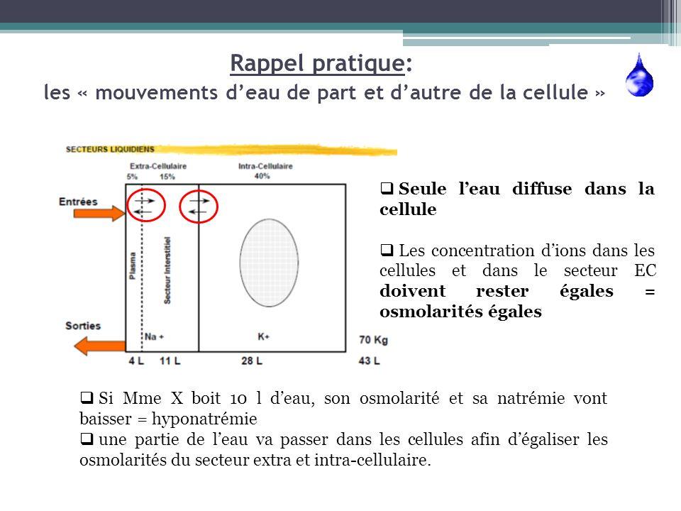 Rappel pratique: les « mouvements d'eau de part et d'autre de la cellule »